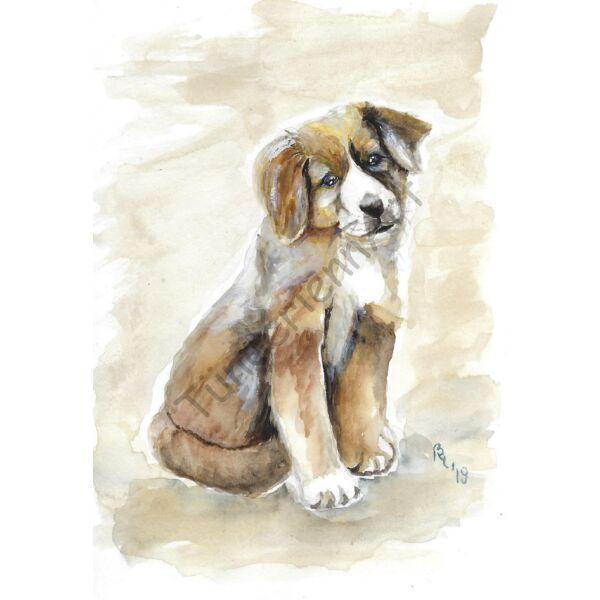 Kutya kép - Bernáthegyi