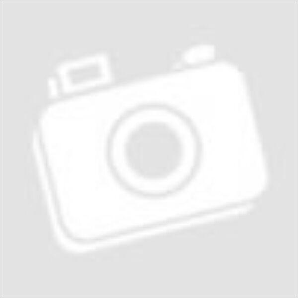 Akvarell festmény: Foxterrier