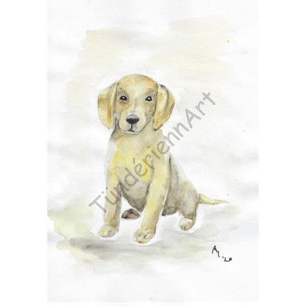 Akvarell festmény: Labrador